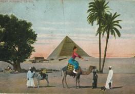 אלה רוכבת על גמל בקהיר